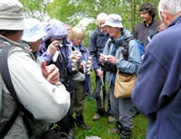Examining the contents of the moth trap (photo by Helen Mainwood)